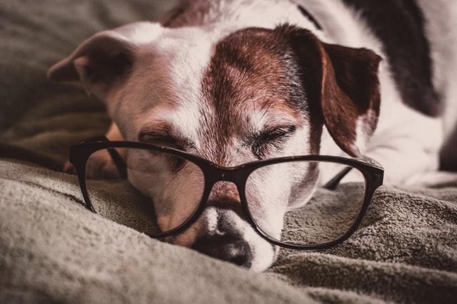 Hold din døgnerytme sund ved hjælp af sovebriller