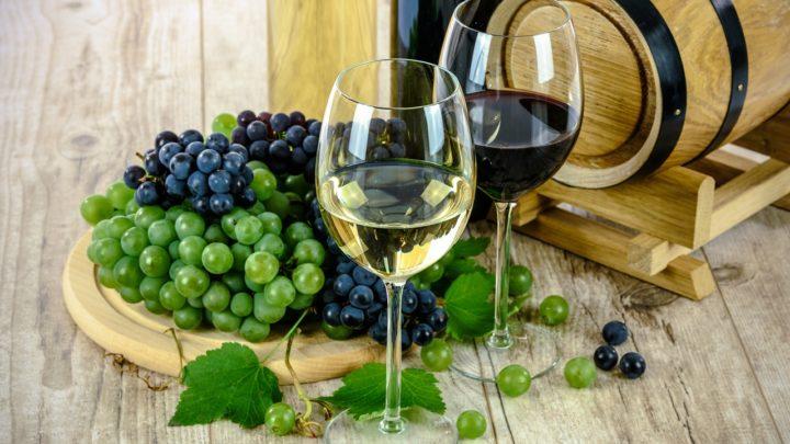 Nybegyndernes guide til rødvin